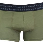 Olive Mens Bamboo Trunks